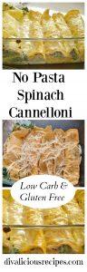 pasta-free-spinach-cannelloni