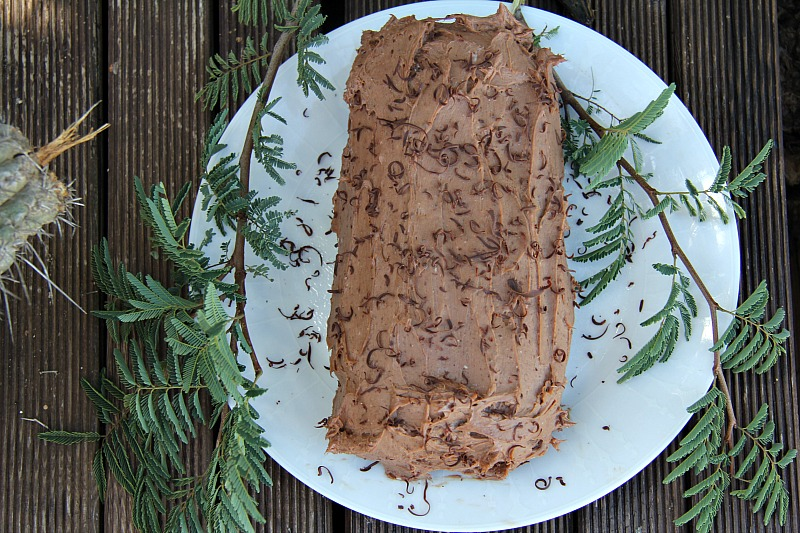 chocolate-yule-log