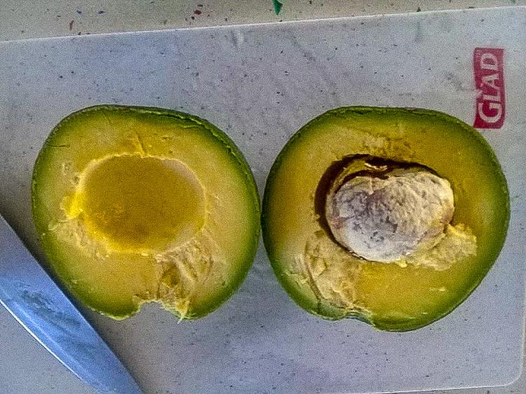 Caribbean avocados