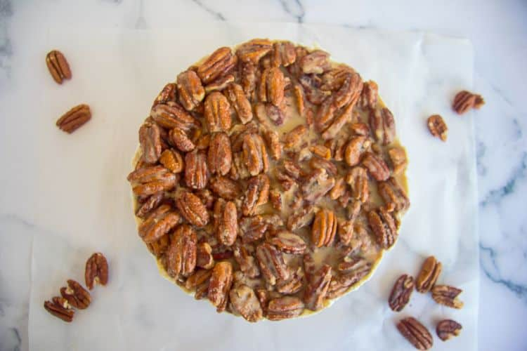 no bake pecan cheesecake